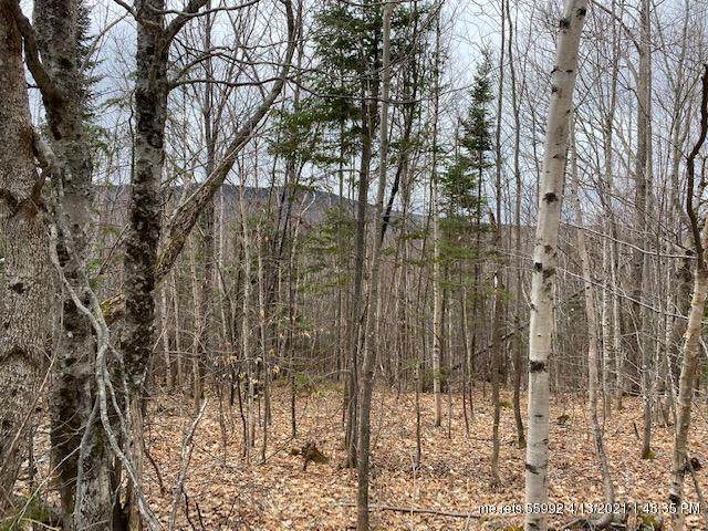 Lot 25D Pauls Path, Sandy River Plt, ME 04970 (MLS #1487376) :: Keller Williams Realty