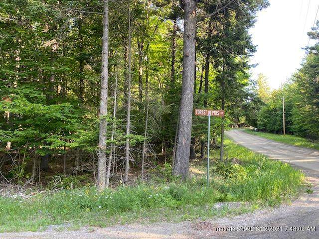 241 Forest Depths Road, Beaver Cove, ME 04441 (MLS #1497373) :: Linscott Real Estate
