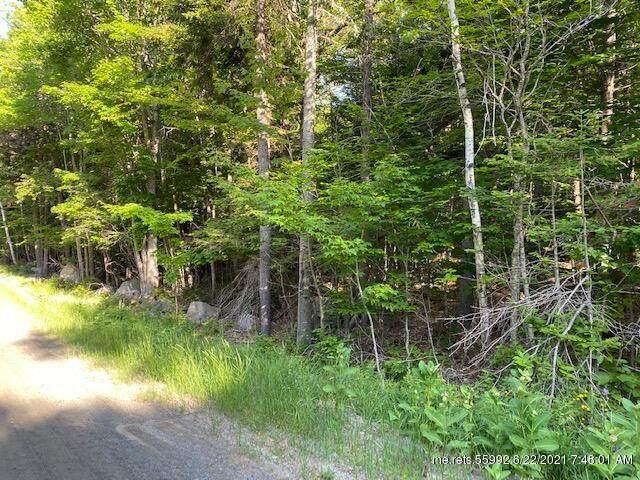 249 Forest Depths Road, Beaver Cove, ME 04441 (MLS #1497374) :: Linscott Real Estate