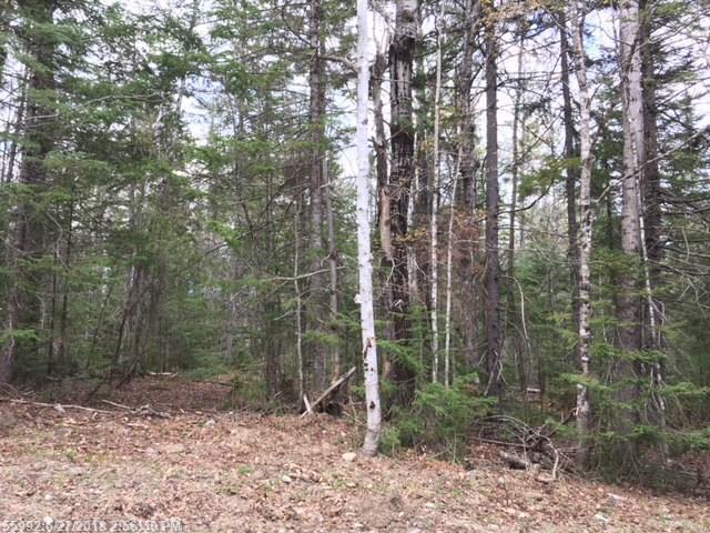 3016 Fir Ave, Carrabassett Valley, ME 04947 (MLS #1335065) :: Herg Group Maine