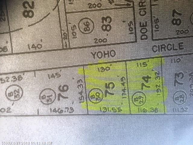 74 75 Yoho Cir, Limerick, ME 04048 (MLS #1352994) :: DuBois Realty Group