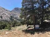 SLP Tract 5 Wyoming Street - Photo 1