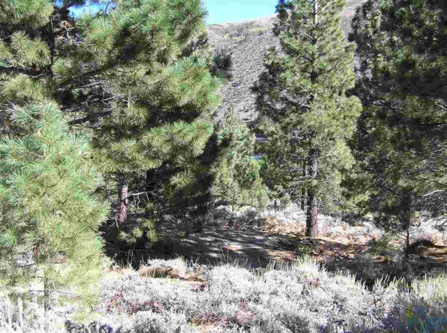 Lot 4 And Lot 17, Twin Lakes, CA 93517 (MLS #106046) :: Rebecca Garrett - Mammoth Realty Group