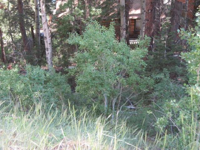 00 Palisades Drive, June Lake, CA 93529 (MLS #108843) :: Mammoth Realty Group