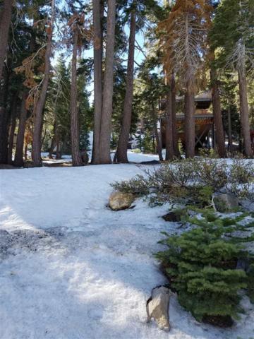 373 John Muir Road, Mammoth Lakes, CA 93546 (MLS #180016) :: Rebecca Garrett - Mammoth Realty Group