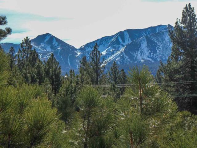 119 Holiday Way, Mammoth Lakes, CA 93546 (MLS #180101) :: Rebecca Garrett - Mammoth Realty Group