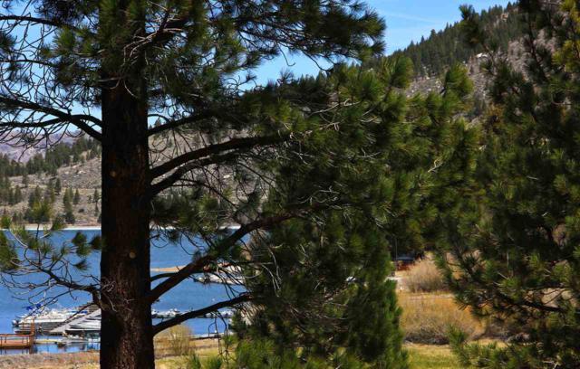 0 Bruce Street, June Lake, CA 93529 (MLS #180313) :: Rebecca Garrett - Mammoth Realty Group