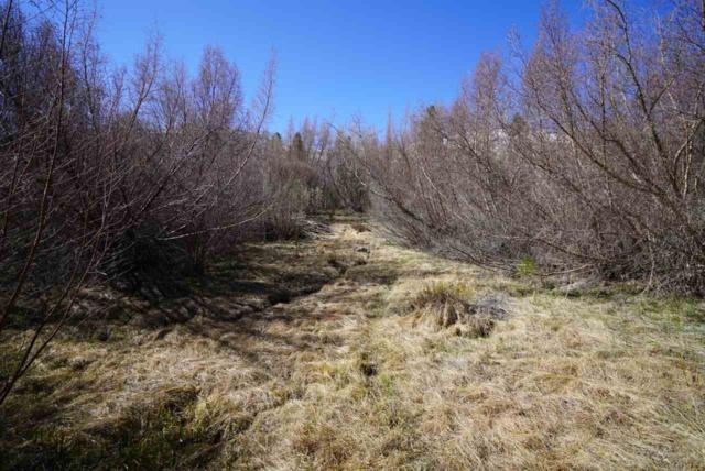 3838 Crowley Lake Drive, Crowley Lake, CA 93546 (MLS #180317) :: Rebecca Garrett - Mammoth Realty Group