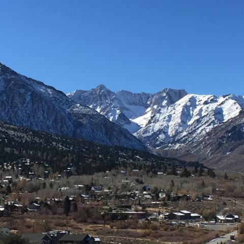 47 Lakeridge Trail, Crowley Lake, CA 93546 (MLS #180337) :: Rebecca Garrett - Mammoth Realty Group