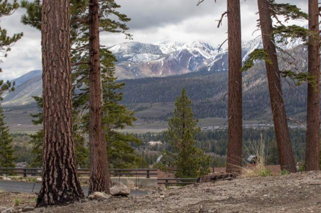 746 John Muir Road, Mammoth Lakes, CA 93546 (MLS #180419) :: Rebecca Garrett - Mammoth Realty Group