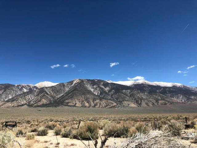 25088 Highway 6, Benton, CA 93512 (MLS #180474) :: Rebecca Garrett - Mammoth Realty Group