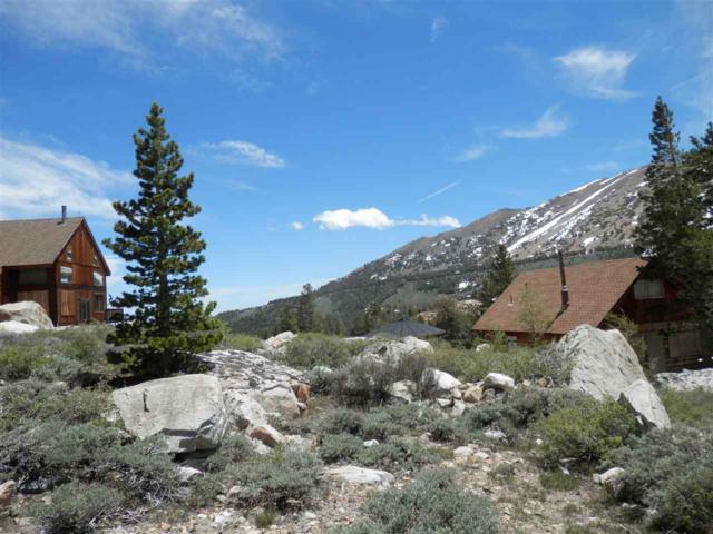 lot 21 Summit Drive, Virginia Lakes, CA 93529 (MLS #180485) :: Rebecca Garrett - Mammoth Realty Group