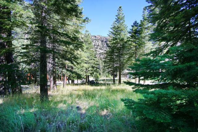 818 Palisades Drive, June Lake, CA 93529 (MLS #180491) :: Mammoth Realty Group