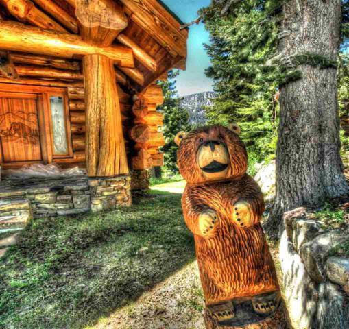 38 Sunny Slopes Road, Mammoth Lakes, CA 93546 (MLS #180495) :: Rebecca Garrett - Mammoth Realty Group