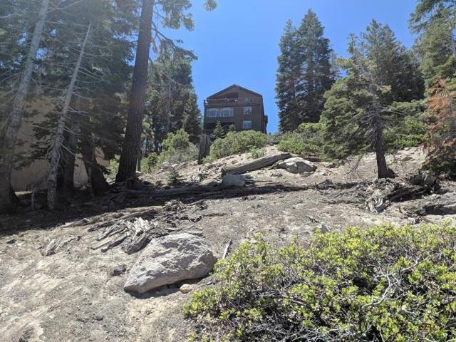 297 John Muir Road, Mammoth Lakes, CA 93546 (MLS #180521) :: Rebecca Garrett - Mammoth Realty Group