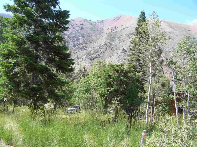 19 Westwood Drive, Twin Lakes, CA 93517 (MLS #180578) :: Mammoth Realty Group