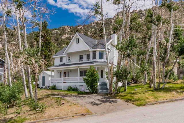89 Meadow View Drive, Crowley Lake, CA 93546 (MLS #180609) :: Rebecca Garrett - Mammoth Realty Group