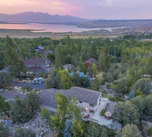309 Juniper Dr, Crowley Lake, CA 93546 (MLS #180663) :: Rebecca Garrett - Mammoth Realty Group