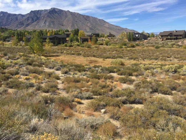 Lot 11 Larkspur Drive, Crowley Lake, CA 93546 (MLS #180885) :: Mammoth Realty Group