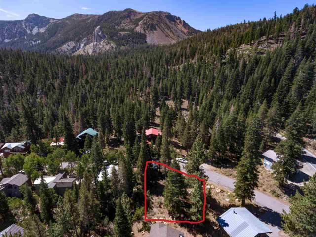 224 Red Fir Road, Mammoth Lakes, CA 93546 (MLS #180955) :: Rebecca Garrett - Mammoth Realty Group