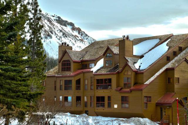 865 Majestic Pines Dr #224, Mammoth Lakes, CA 93546 (MLS #180993) :: Rebecca Garrett - Mammoth Realty Group