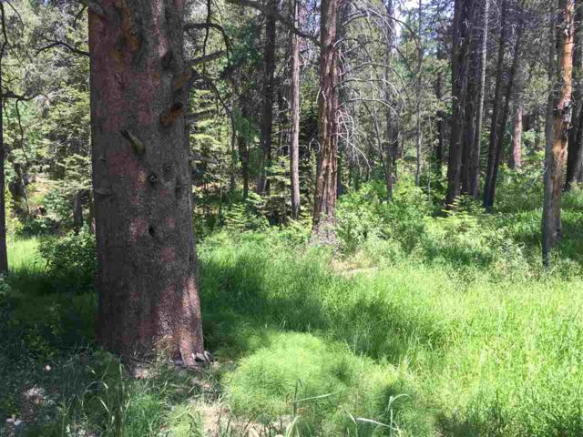 779 Minaret Road, June Lake, CA 93529 (MLS #190063) :: Rebecca Garrett - Mammoth Realty Group