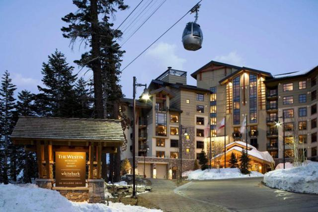 50 Hillside Dr #204, Mammoth Lakes, CA 93546 (MLS #190075) :: Mammoth Realty Group