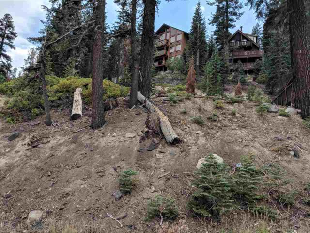 317 John Muir, Mammoth Lakes, CA 93546 (MLS #190134) :: Mammoth Realty Group