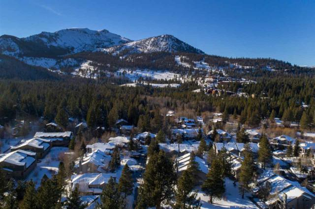 563 Golden Creek Rd, Mammoth Lakes, CA 93546 (MLS #190216) :: Mammoth Realty Group
