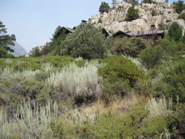 Lot 1 Bay Street, June Lake, CA 93529 (MLS #190240) :: Mammoth Realty Group