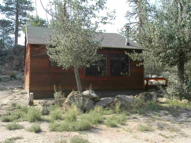 319 Dry Trail, Sunny Slopes, CA 93529 (MLS #190249) :: Mammoth Realty Group