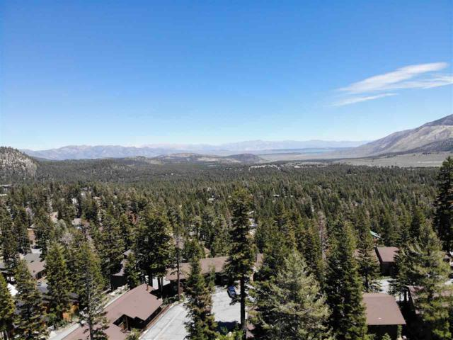 297 John Muir Road, Mammoth Lakes, CA 93546 (MLS #190263) :: Mammoth Realty Group