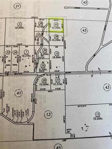Lot 29 Jocelyn Lane, Walker, CA 96107 (MLS #190292) :: Millman Team
