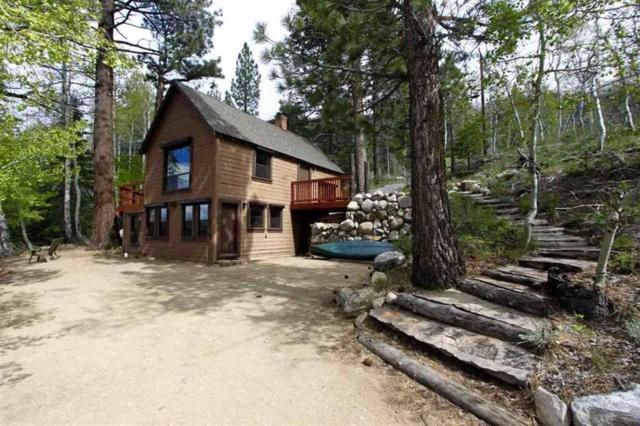 21 S Twin Lakes Road, Bridgeport, CA 93517 (MLS #190296) :: Mammoth Realty Group