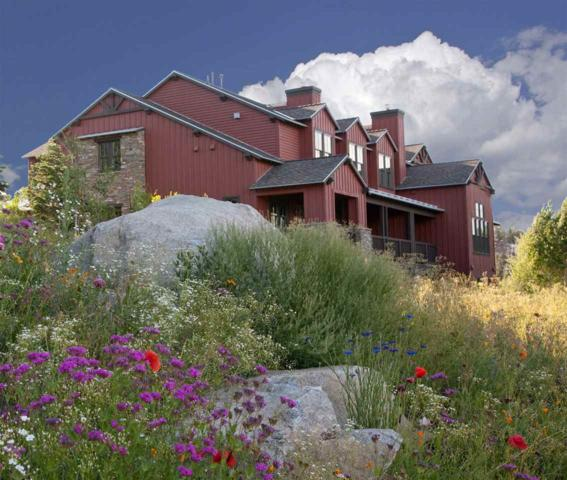 1411 Boulder Creek Road, Mammoth Lakes, CA 93546 (MLS #190412) :: Mammoth Realty Group