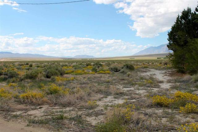Lot 10 Valley Rd Road, Bishop, CA 93514 (MLS #190431) :: Mammoth Realty Group