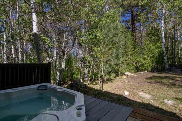 251 Juniper Drive, Crowley Lake, CA 93546 (MLS #190438) :: Mammoth Realty Group