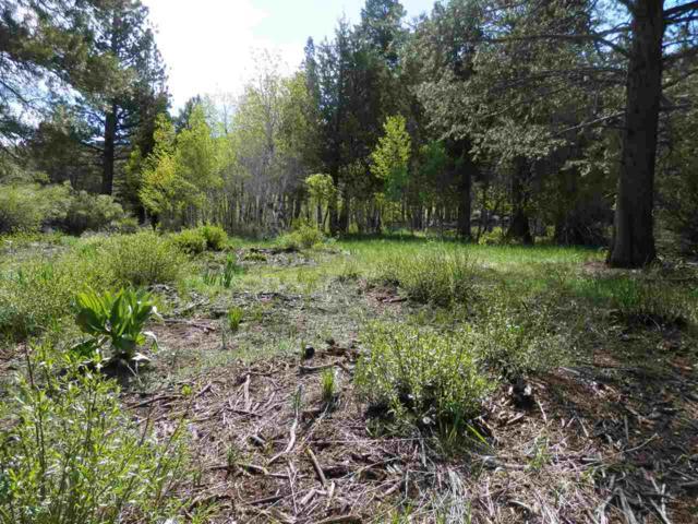 lot 12 Aspen Grove, June Lake, CA 93529 (MLS #190440) :: Mammoth Realty Group