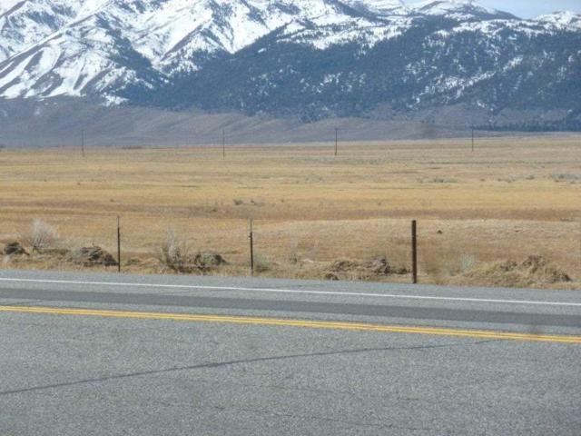 Lot 2 Block A Castle Peak Road, Bridgeport, CA 93517 (MLS #190449) :: Mammoth Realty Group
