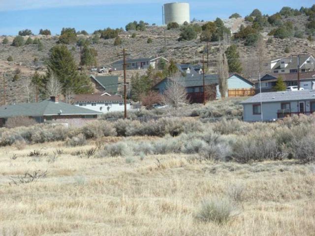 Lot 3 Block A Castle Peak Road, Bridgeport, CA 93517 (MLS #190450) :: Mammoth Realty Group