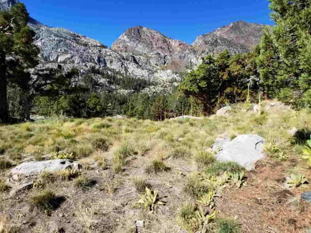 0 Steelhead Rd, June Lake, CA 93529 (MLS #190474) :: Mammoth Realty Group