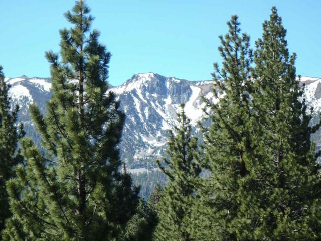 119 Holiday Way, Mammoth Lakes, CA 93546 (MLS #190494) :: Millman Team