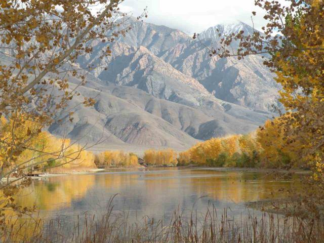 710 Falls Creek Road, Hammil Valley, CA 93514 (MLS #190569) :: Mammoth Realty Group