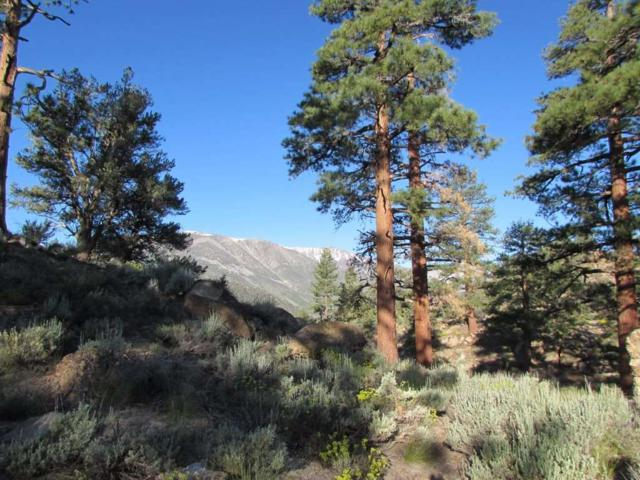 Lot 36 Montana Rd, Sunny Slopes/Tom's Place, CA 93546 (MLS #190619) :: Mammoth Realty Group