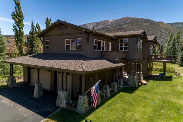 376 Sierra Springs Drive, Crowley Lake, CA 93546 (MLS #190685) :: Mammoth Realty Group