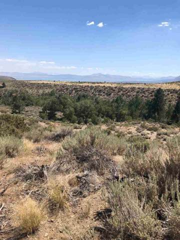 Lot 10 Block 7 E Mono Lake Dr Drive, Mono City, CA 93541 (MLS #190756) :: Millman Team