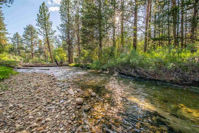 0 Kayak, Bridgeport, CA 93546 (MLS #190769) :: Mammoth Realty Group