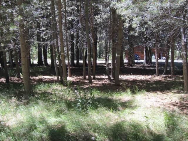 Lot #18 Dream Mountain Drive, June Lake, CA 93529 (MLS #190844) :: Mammoth Realty Group