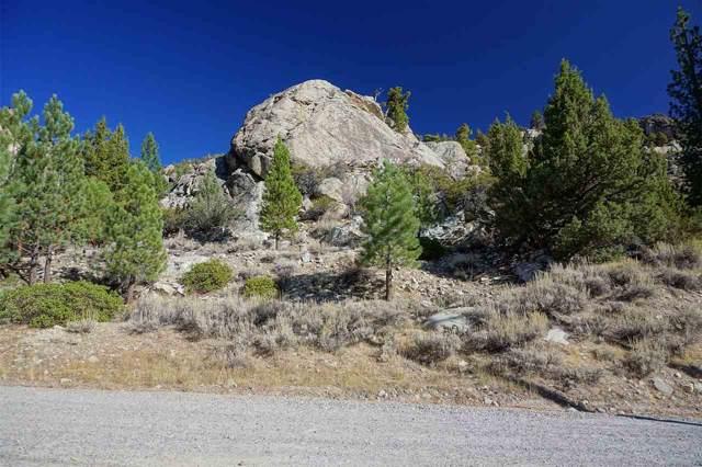 Lot 15 W Steelhead, June Lake, CA 93529 (MLS #190847) :: Mammoth Realty Group