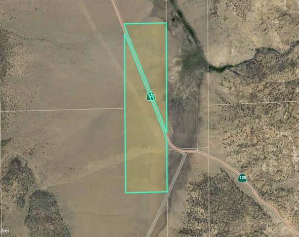 160 Acres on Hwy 120, Benton, CA 93512 (MLS #200039) :: Mammoth Realty Group